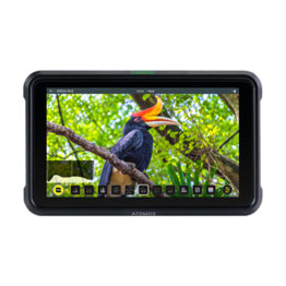 "Atomos Shinobi 5"" 4K HDR Monitor For Photo & Video"